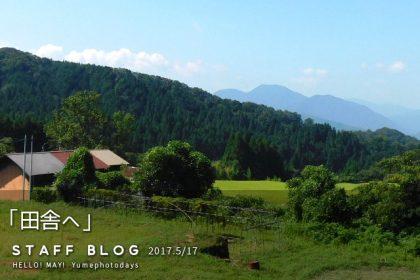 GWブログ